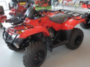 Honda TRX 250 TM  ATV & Quad